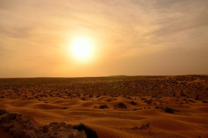 blog désert